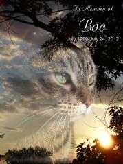 Boo's-Memorial-Photo
